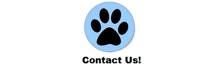 Animal Advocacy Contact Us Button Janet Bovitz Sandefur just-do-something.org