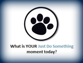 Animal Advocacy Just Do Something Moment Banner Janet Bovitz Sandefur just-do-something.org