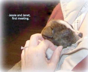 Mommy and Jessie - first meeting and hug at the foster home.