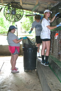 Em, Nick, and Rose cleaning cages