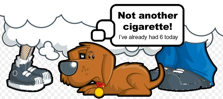 Animal Advocacy Blog Picture Janet Bovitz Sandefur just-do-something.org
