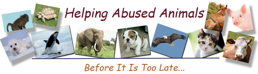 Animal Advocacy Blog Picture Janet Bovitz Sandefur just-do-something.org