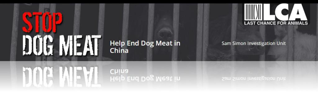 Just-Do-Something.org Janet Bovitz Sandefur Animal Advocacy Animal Welfare