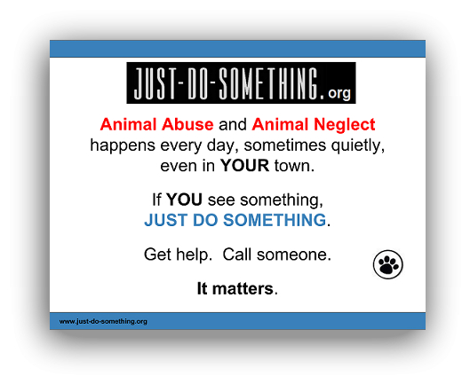 Just-Do-Something.org Janet Bovitz Sandefur Animal Advocacy Animal Welfare