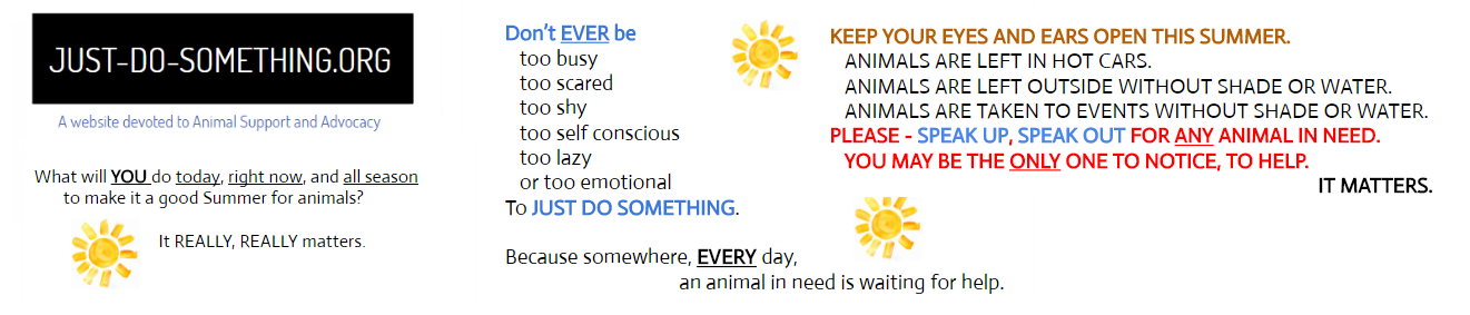 Animal Advocacy Animal Welfare Janet Bovitz Sandefur just-do-something.org