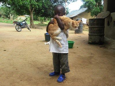 Animal Advocacy Blog Animal Welfare janet Bovitz sandefur just-do-something.org