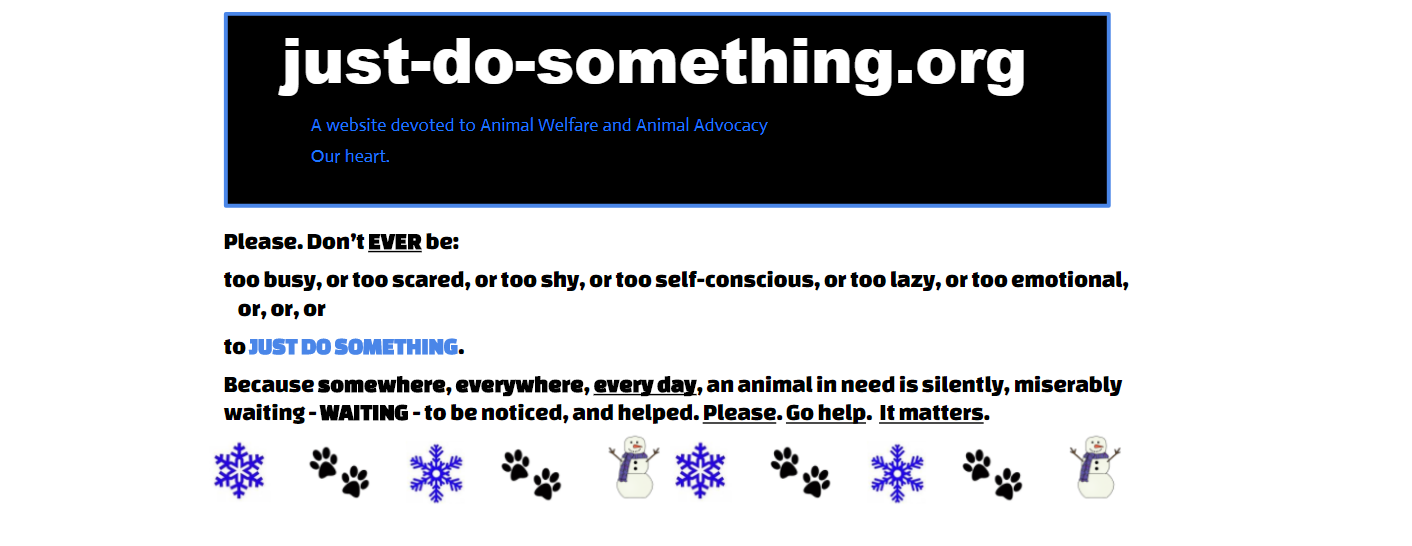 Animal Advocacy Blog Animal Welfare janet Bovitz sandeAnimal Advocacy Blog Animal Welfare janet Bovitz sandefur just-do-something.org