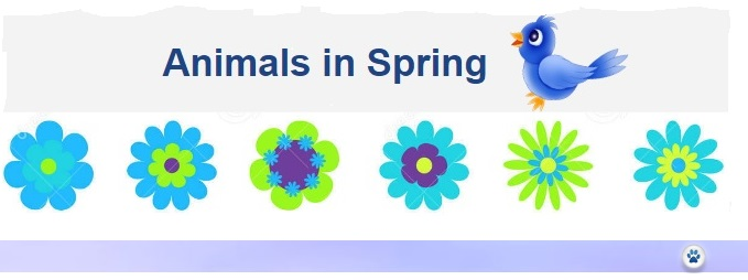 Spring just-do-something.org Janet Bovitz Sandefur Animal Welfare